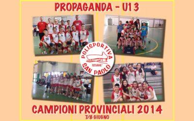 Campioni provinciali 2014!